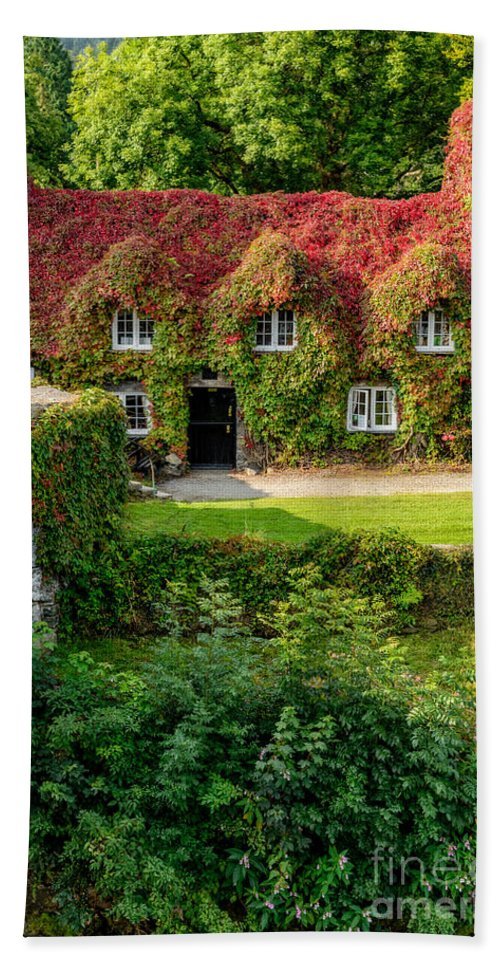 Autumnal Hand Towel featuring the photograph Autumn Brilliance by Adrian Evans