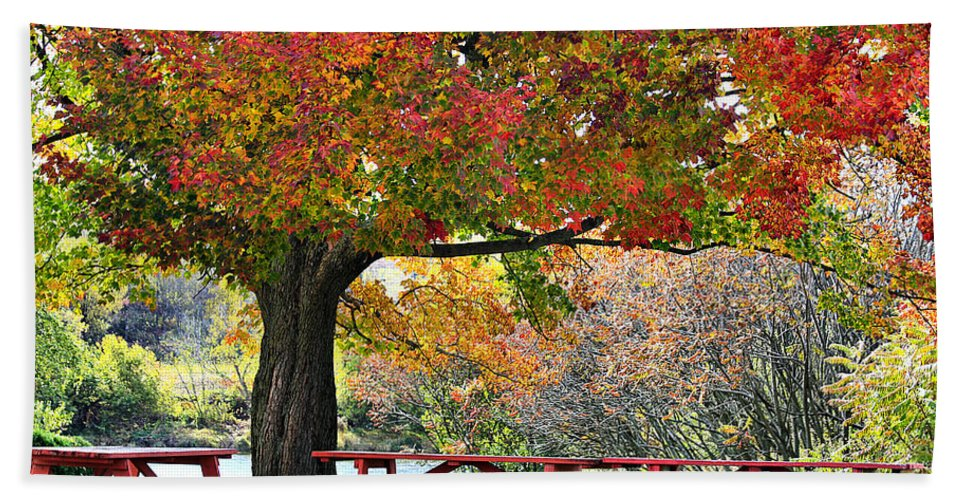 Fall Hand Towel featuring the photograph Autumn By The River On 105 by Deborah Benoit