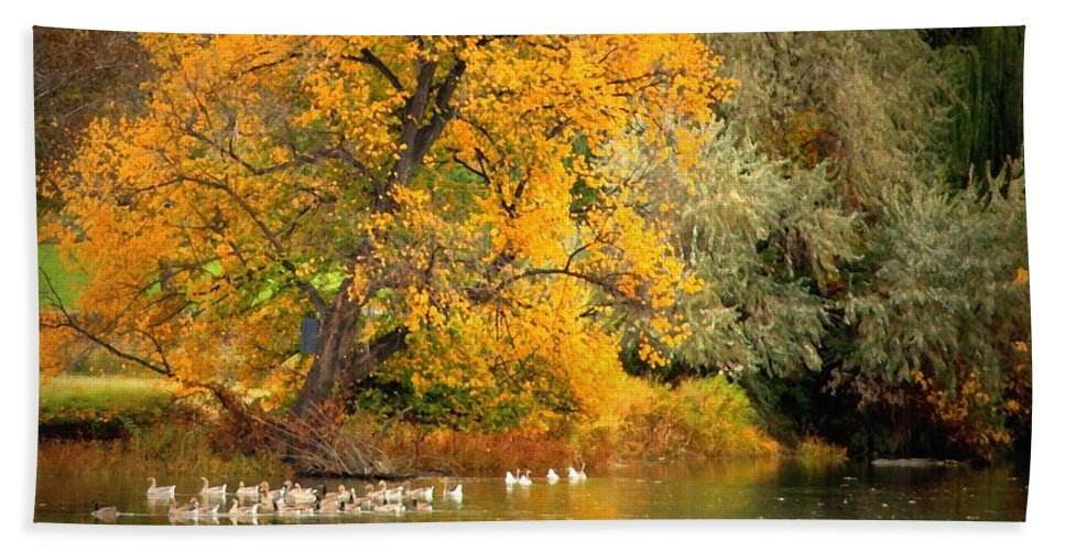 Fall Bath Sheet featuring the photograph Autumn Calm by Carol Groenen