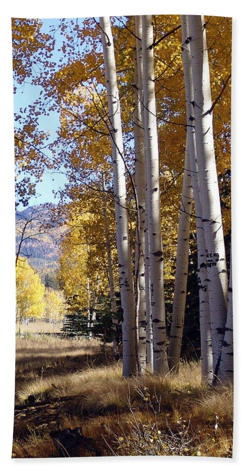 Autumn Bath Sheet featuring the photograph Autumn Chama New Mexico by Kurt Van Wagner
