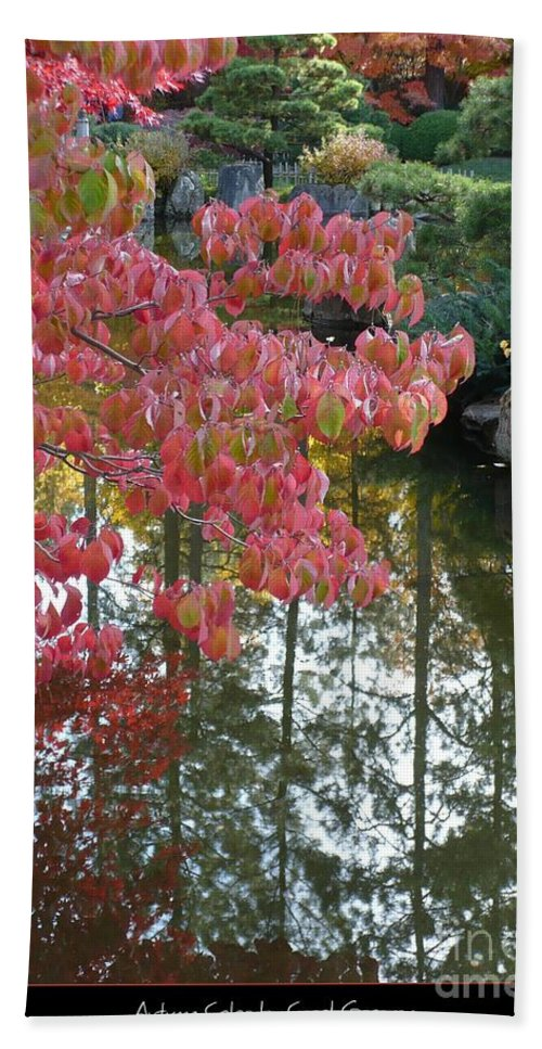 Colorful Hand Towel featuring the photograph Autumn Color Poster by Carol Groenen