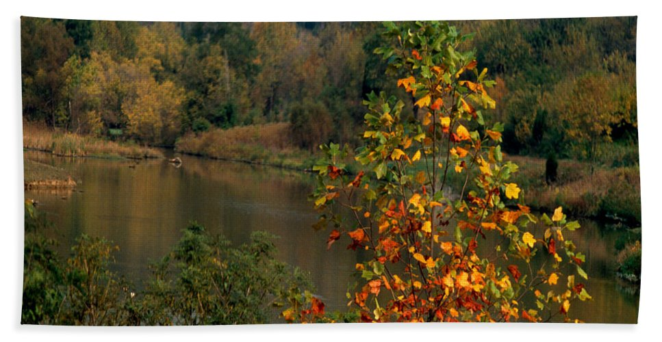 Fall Colors Bath Sheet featuring the photograph Autumn Colors by Gary Wonning