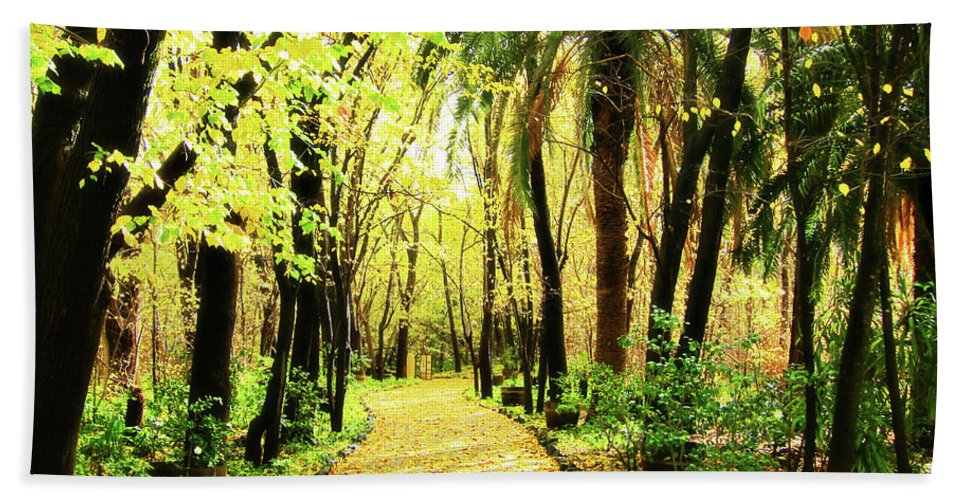 Autumn Bath Towel featuring the photograph Autumn Corridor by Douglas Barnard