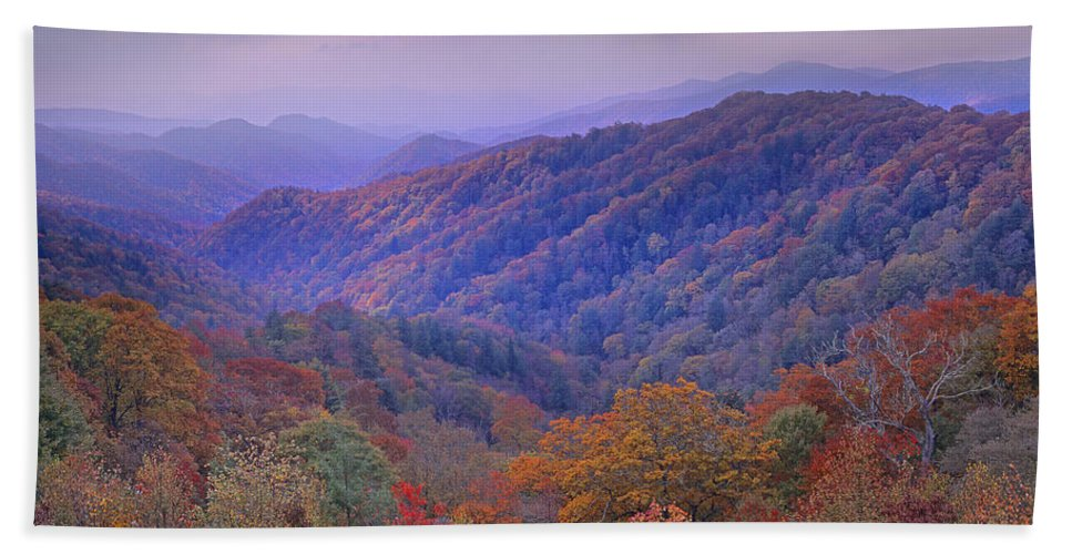 00175805 Bath Towel featuring the photograph Autumn Deciduous Forest Great Smoky by Tim Fitzharris