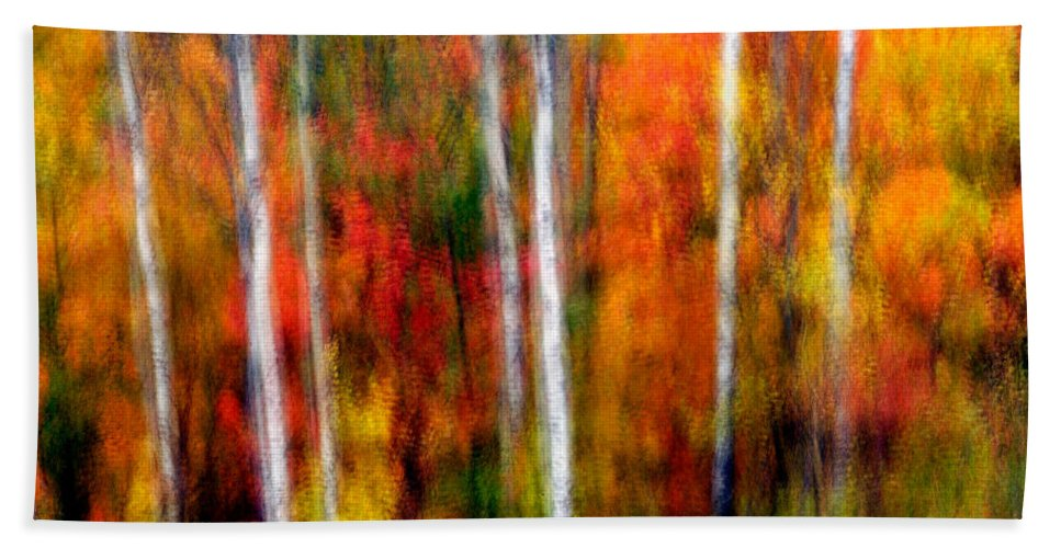 Canada Bath Sheet featuring the photograph Autumn Dreams by Doug Gibbons