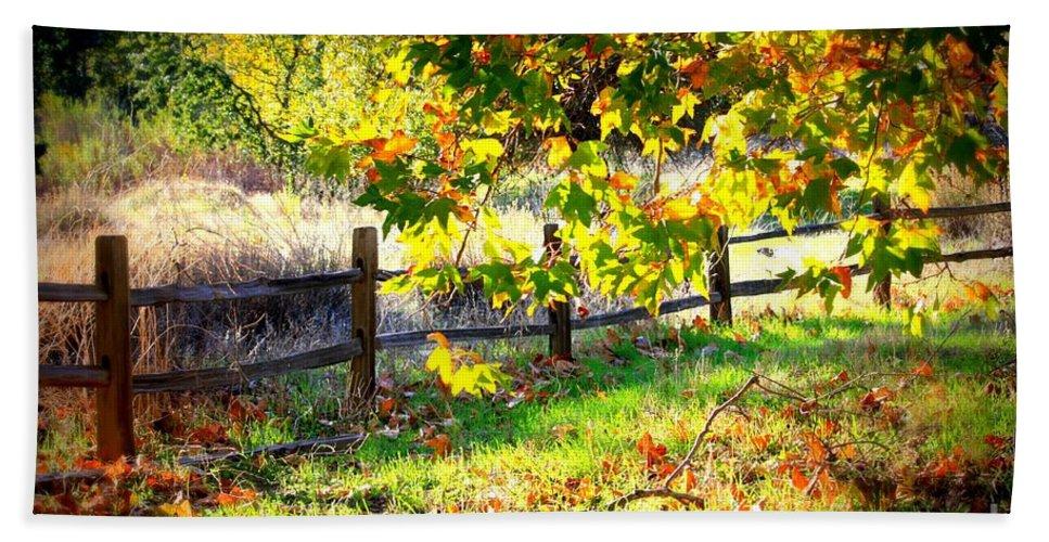 Fences Bath Towel featuring the photograph Autumn Fence by Carol Groenen