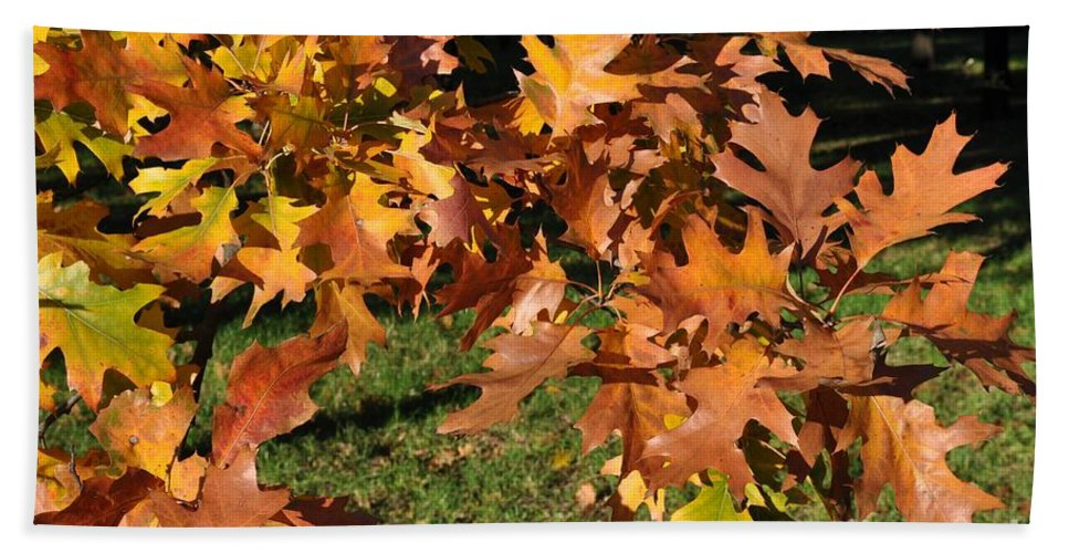 Autumn Leaves Hand Towel featuring the photograph Autumn Fragrance by Georgeta Blanaru