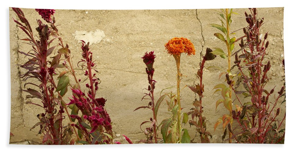 Flowers Hand Towel featuring the photograph Autumn Garden by Michele Burgess