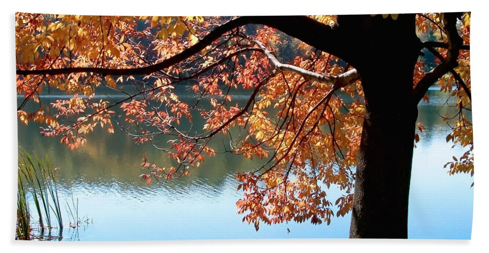 Lake Hand Towel featuring the photograph Autumn Glory by Karin Everhart