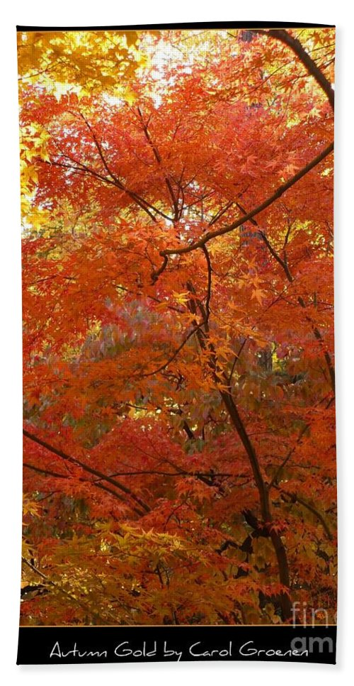 Fall Bath Towel featuring the photograph Autumn Gold Poster by Carol Groenen