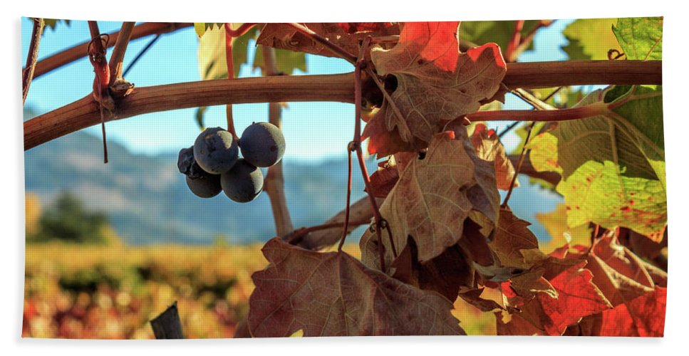 Autumn Bath Sheet featuring the photograph Autumn In The Wine Country by James Eddy