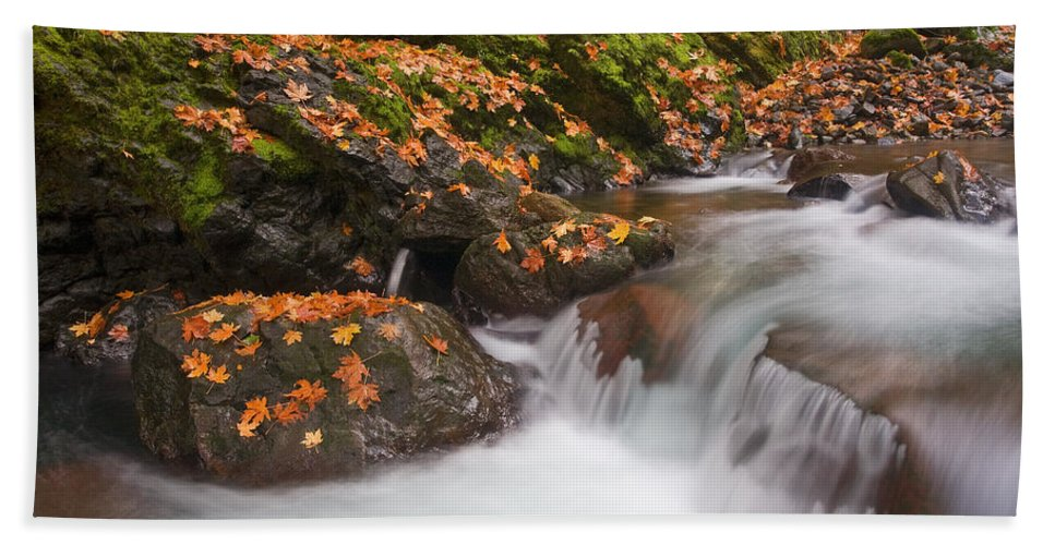 Autumn Bath Sheet featuring the photograph Autumn Litter by Mike Dawson