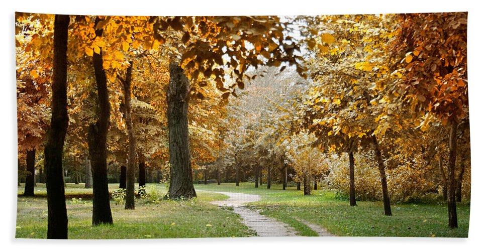 Fall Hand Towel featuring the photograph Autumn by Masha Batkova