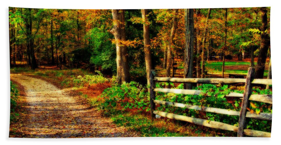 Autumn Bath Sheet featuring the photograph Autumn Moment - Allaire State Park by Angie Tirado
