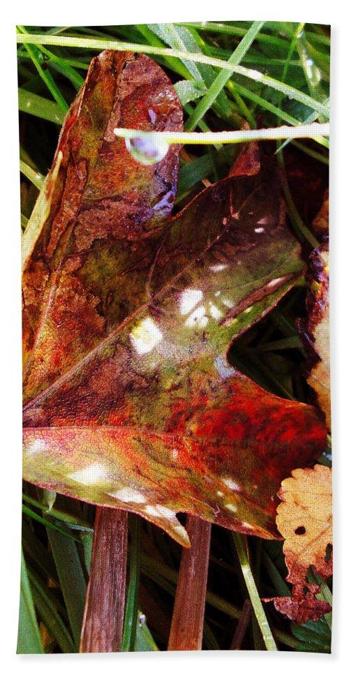 Bath Sheet featuring the photograph Autumn Palette by Susan Baker