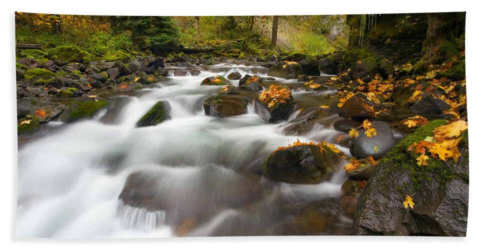Stream Hand Towel featuring the photograph Autumn Passages by Mike Dawson