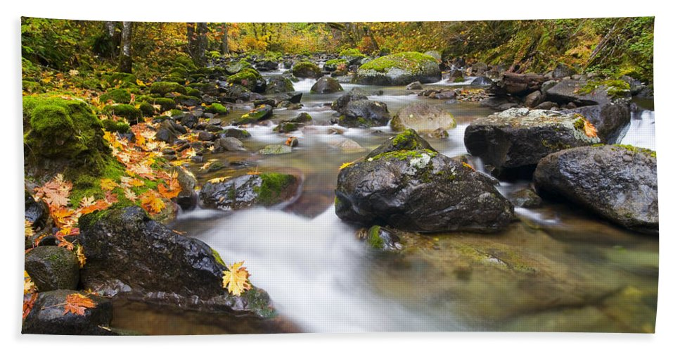 Fall Bath Sheet featuring the photograph Autumn Passing by Mike Dawson