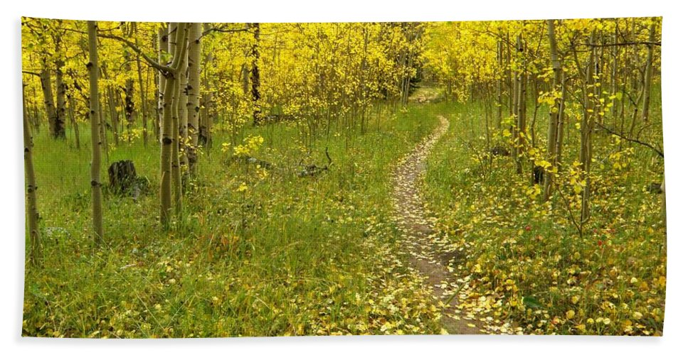 Colorado Rockymountains Autumn Golden Leaves Path Hike Walk Aspen Bath Sheet featuring the photograph Autumn Path by George Tuffy