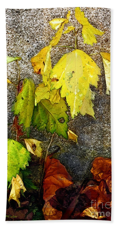 Autumn Bath Towel featuring the painting Autumn Rainbow by RC DeWinter