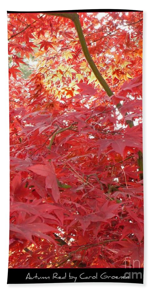 Autumn Bath Towel featuring the photograph Autumn Red Poster by Carol Groenen