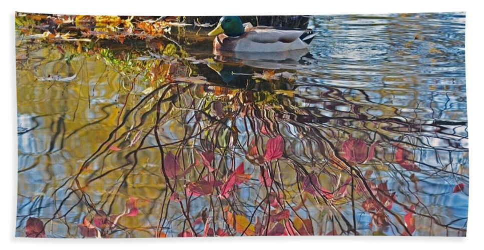 Duck Hand Towel featuring the photograph Autumn Reflections by Asbed Iskedjian