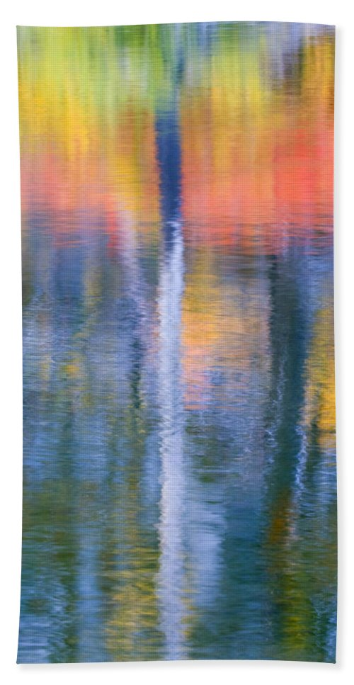 Reflection Bath Towel featuring the photograph Autumn Resurrection by Mike Dawson