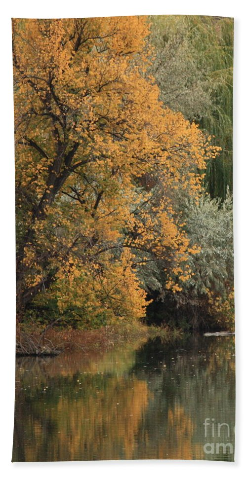 Landscape Bath Sheet featuring the photograph Autumn Riverbank by Carol Groenen