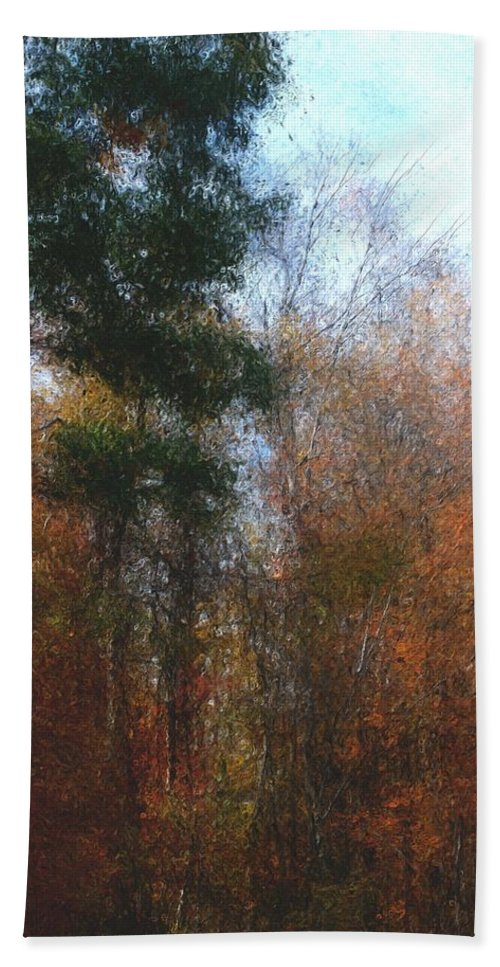 Nature Hand Towel featuring the photograph Autumn Scene 10-23-09 by David Lane