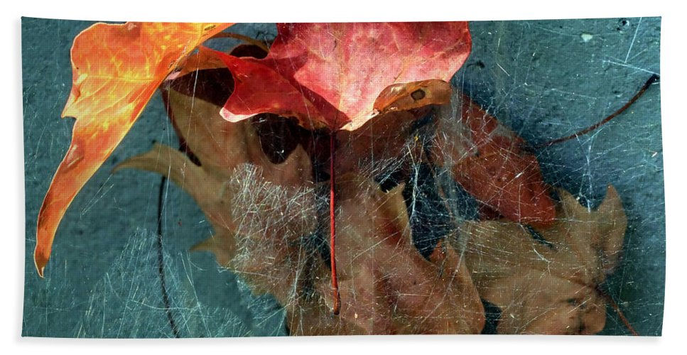 Autumn Bath Towel featuring the photograph Autumn Seined by RC deWinter