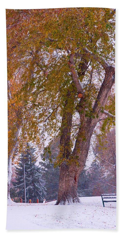 First Snow Hand Towel featuring the photograph Autumn Snow Park Bench  by James BO Insogna