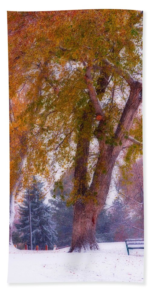Parks Hand Towel featuring the photograph Autumn Snow Park Bench Peace by James BO Insogna