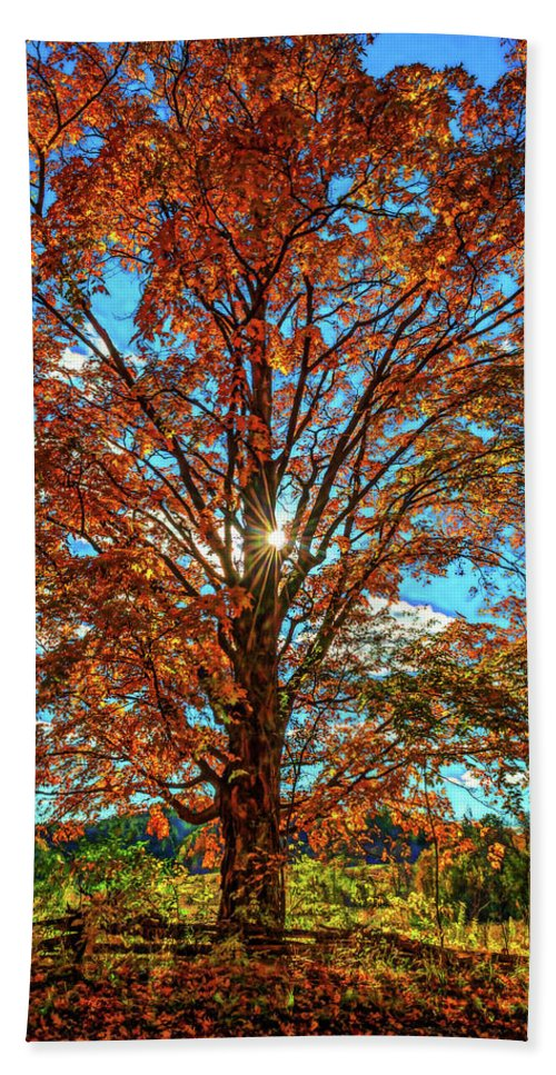 Steve Harrington Bath Sheet featuring the photograph Autumn Star- Paint by Steve Harrington