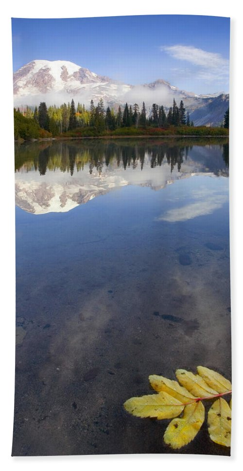 Rainier Hand Towel featuring the photograph Autumn Suspended by Mike Dawson