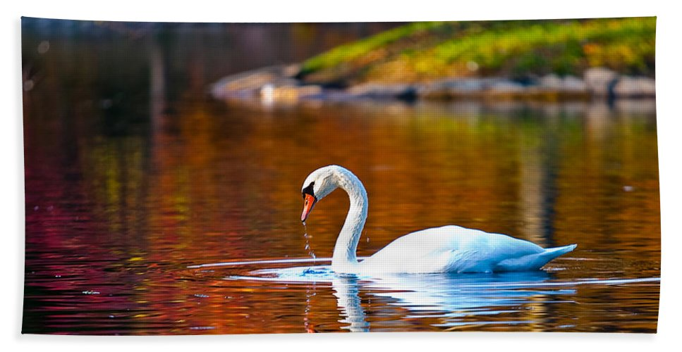 Cincinnati Hand Towel featuring the photograph Autumn Swan Lake by Keith Allen