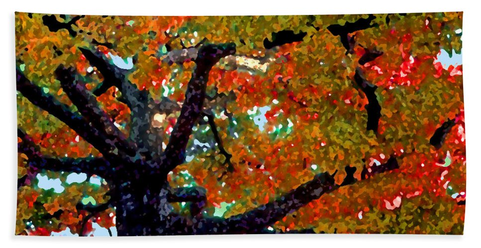 Fall Bath Sheet featuring the photograph Autumn Tree by Steve Karol