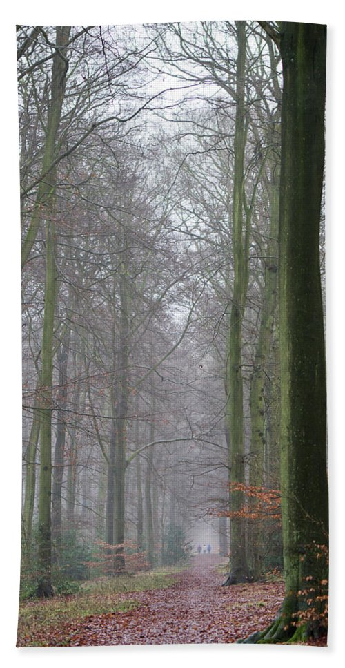 Autumn Bath Sheet featuring the photograph Autumn Woodland Avenue by Gary Eason