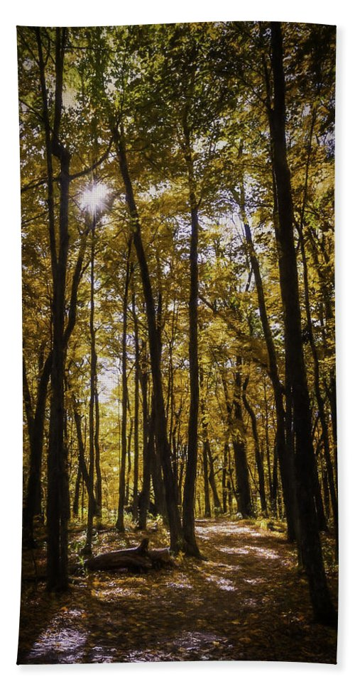 Autumn Hand Towel featuring the photograph Autumns Fire by Scott Norris