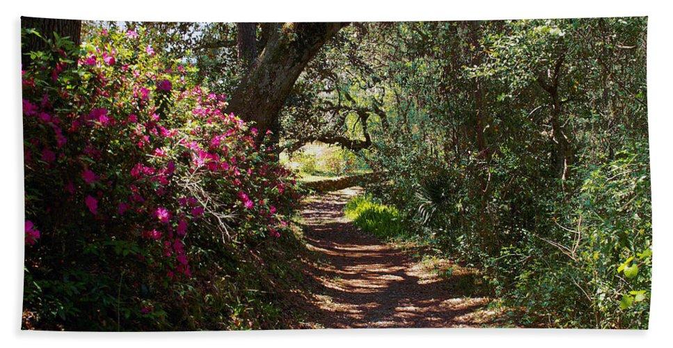 Azalea Hand Towel featuring the photograph Azalea Path by Bob Johnson