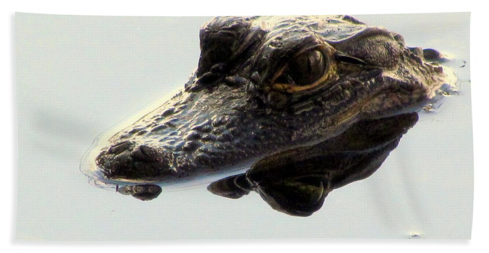 Alligator Hand Towel featuring the photograph Little But Fierce by Lori Pessin Lafargue