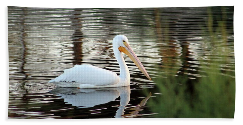 Pelican Hand Towel featuring the photograph Backwater Serenity Photograph by Kimberly Walker