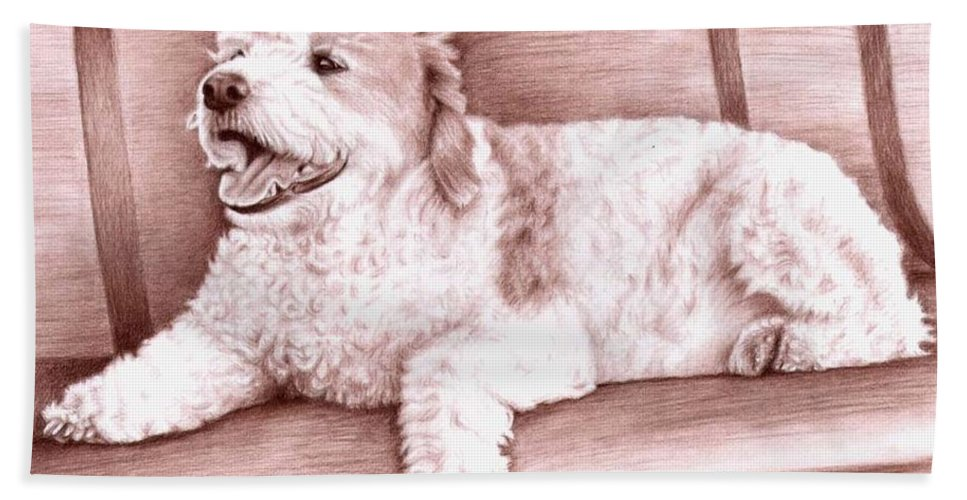 Dog Bath Towel featuring the drawing Baco by Nicole Zeug