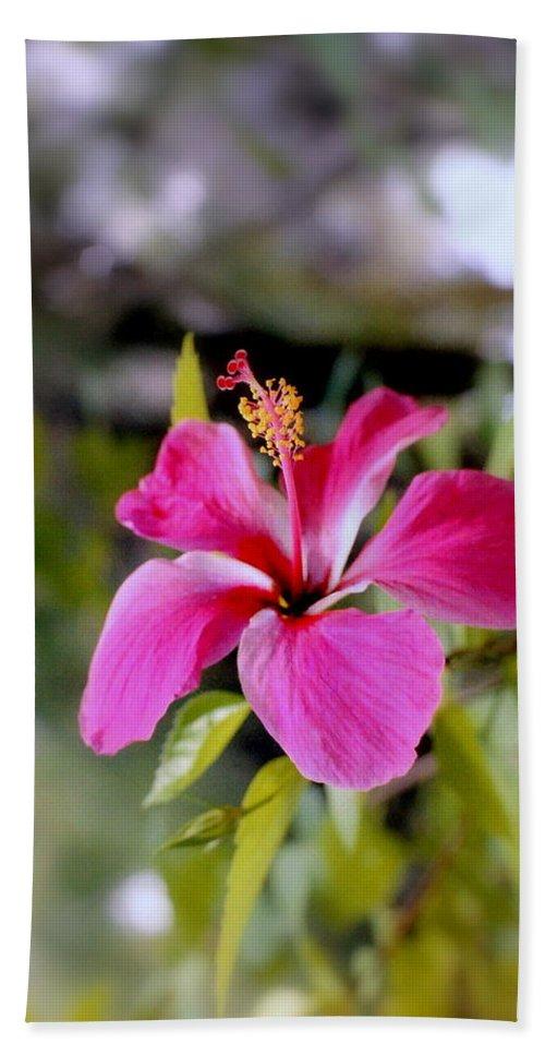 Flowers Hand Towel featuring the photograph Bahamian Flower by Deborah Crew-Johnson