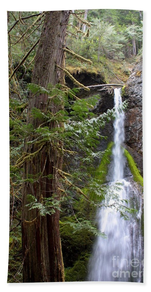 Landscape Bath Sheet featuring the photograph Balance In Nature by Carol Groenen
