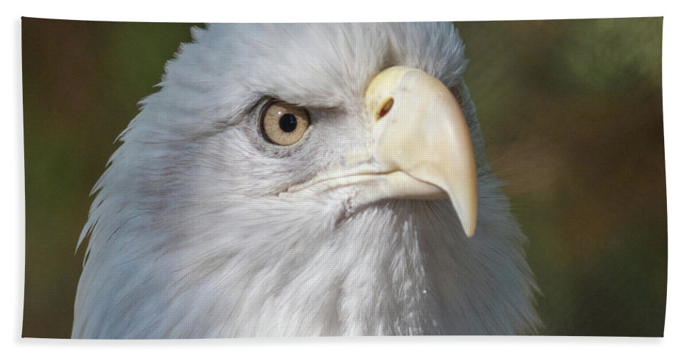 Bald Eagle Hand Towel featuring the photograph Bald Eagle by Andrew Lelea