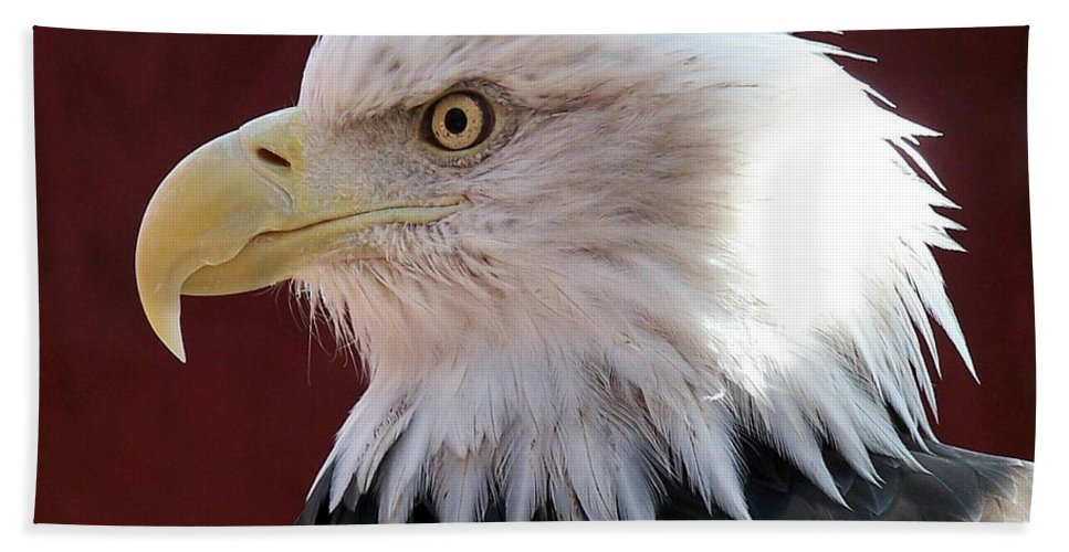 Animal Hand Towel featuring the photograph Bald Eagle by Ernie Echols