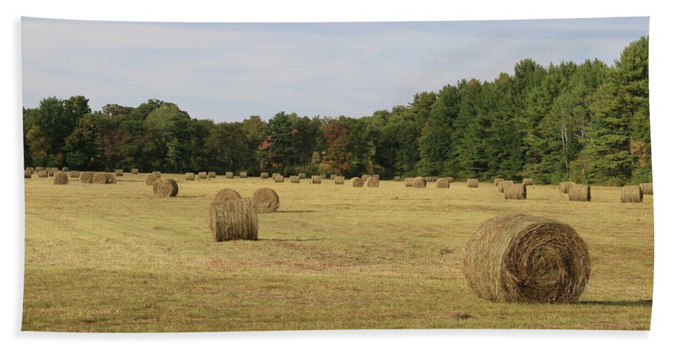 Landscape Bath Sheet featuring the photograph Bales Of Hay by Gene Lossman