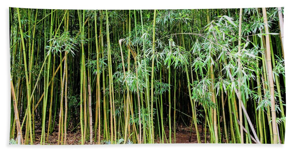Bamboo Chimes Bath Towel featuring the photograph Bamboo Chimes, Waimoku Falls trail, Hana Maui Hawaii by Michael Bessler