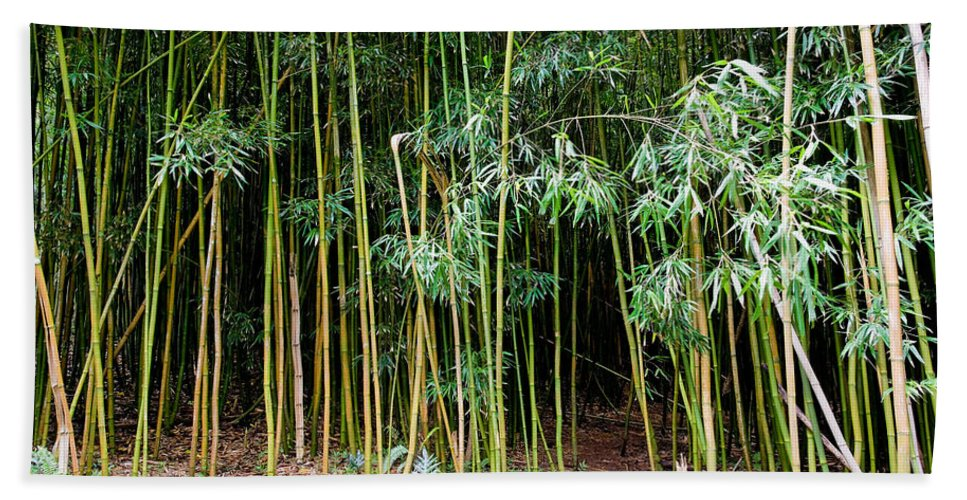 Bamboo Wind Chimes Bath Towel featuring the photograph Bamboo Wind Chimes Waimoku Falls Trail Hana Maui Hawaii by Michael Bessler