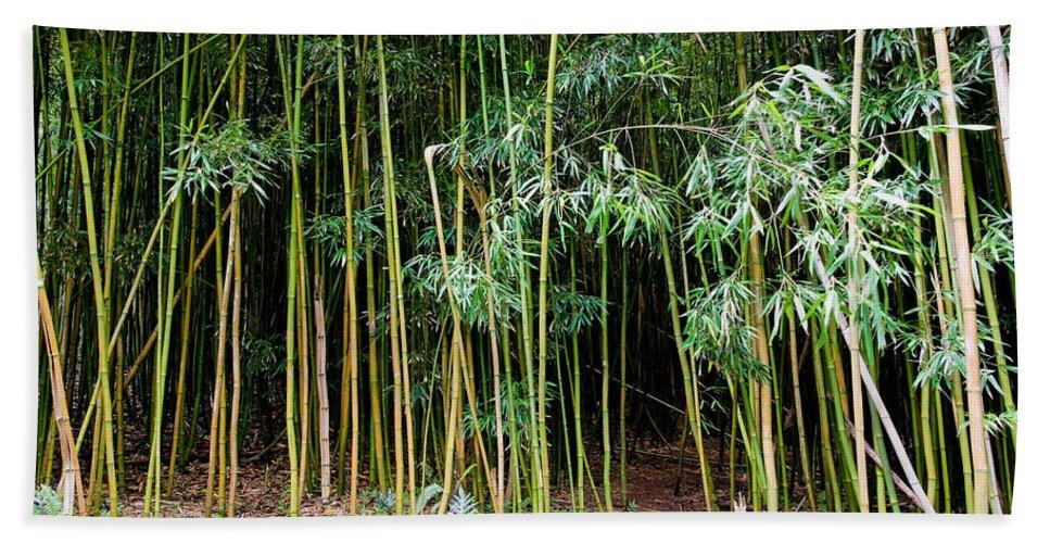 Bamboo Wind Chimes Bath Sheet featuring the photograph Bamboo Wind Chimes Waimoku Falls Trail Hana Maui Hawaii by Michael Bessler
