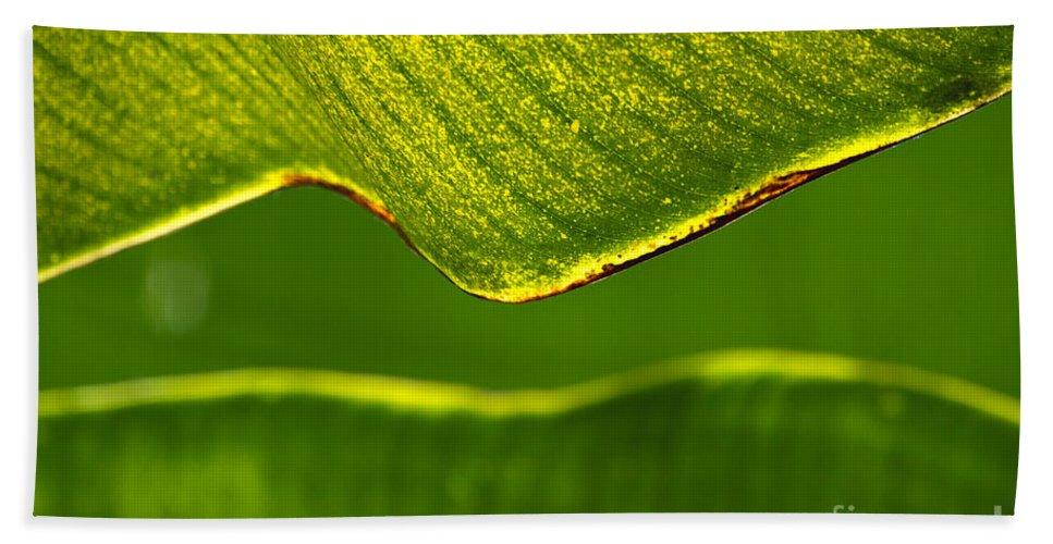 Banana Leaf Bath Sheet featuring the photograph Banana Leaf Lines by Alycia Christine